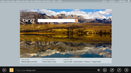 With Internet Explorer 10, websites are front and center