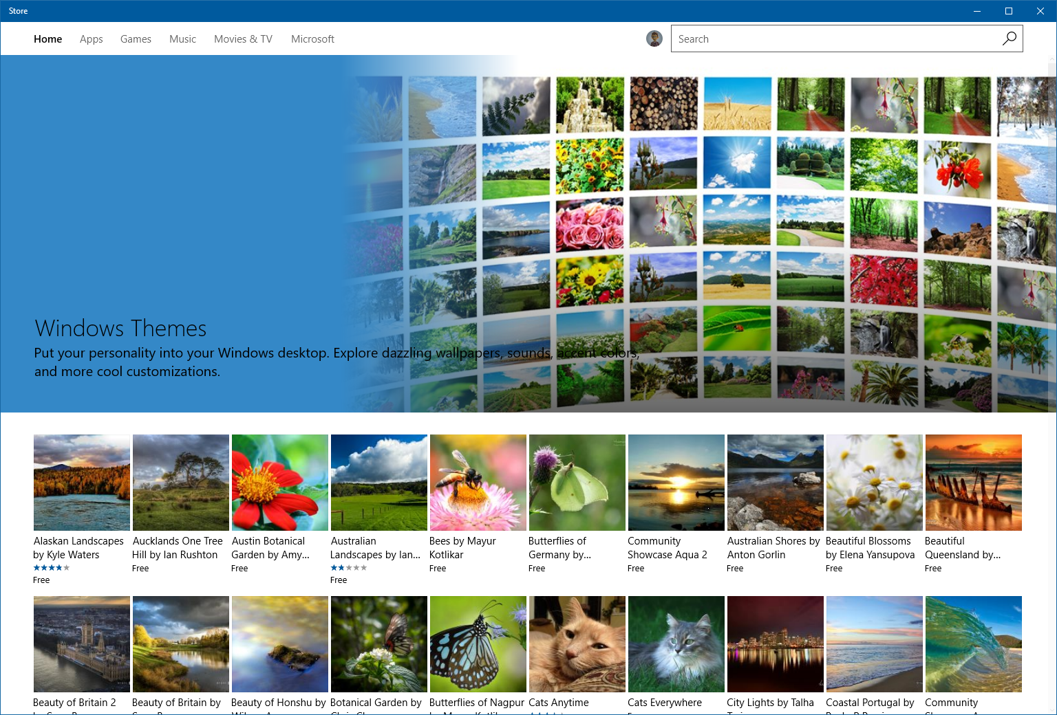 Themes in the Windows Store.